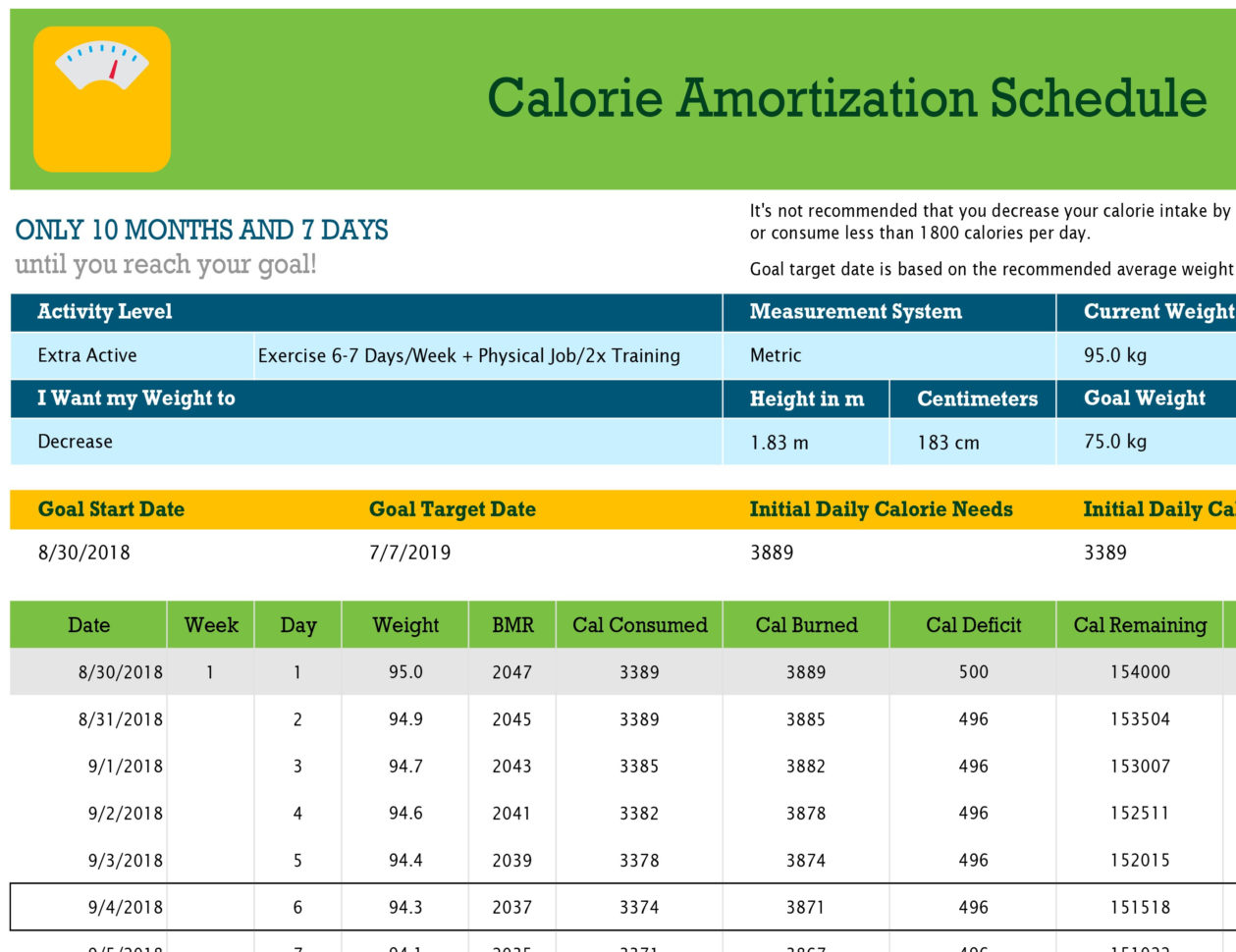 Daily Calories & Food Nutrition Excel Spreadsheet Calculator Inside Calorie Amortization Schedule