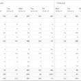 Daily Cash Flow Spreadsheet with Daily Cash Flow Forecast Cashflow
