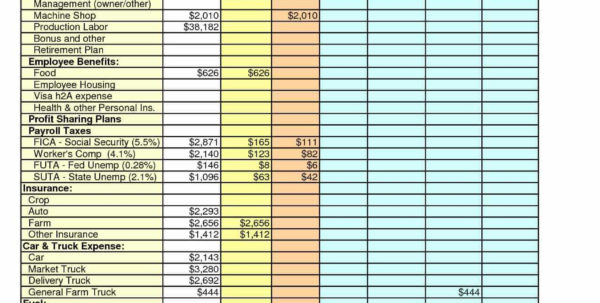 Daily Expenses Spreadsheet Intended For Daily Expense Excel Sheet Format And Excel Revenue And Expenses