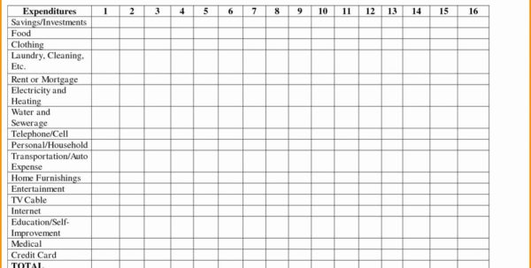 Daily Spreadsheet Regarding Personal Daily Expense Sheet Excel Fresh Spreadsheet Examples For
