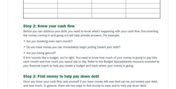 Debt Tracker Spreadsheet With 38 Debt Snowball Spreadsheets, Forms  Calculators ❄❄❄