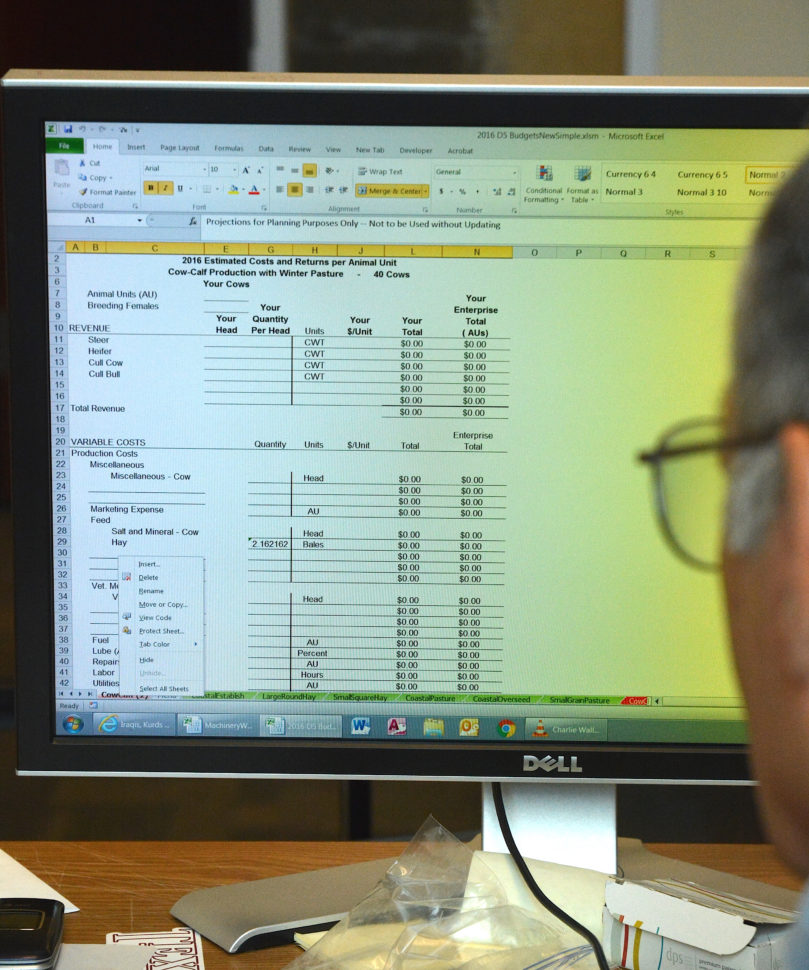 Develop A Spreadsheet Using Computer Software In Agrilife Extension Crop And Livestock Budget Spreadsheets Now