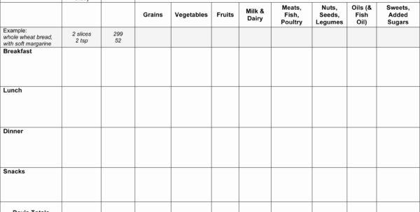 Diabetes Excel Spreadsheet Throughout Diabetes Tracker Spreadsheet Luxury Blood Sugar Log Template Excel