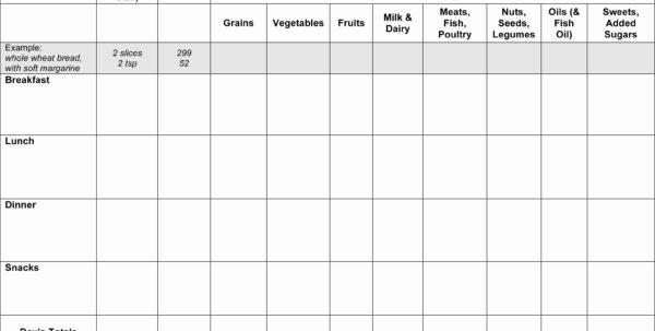 diabetes food log printable gestational diabetes food log printable diabetes food log spreadsheet