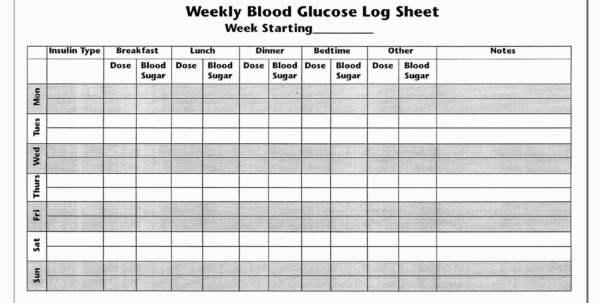 Diabetes Glucose Log Spreadsheet Regarding Blood Sugar Journal Template Printable Diabetic Log Book  Parttime Jobs