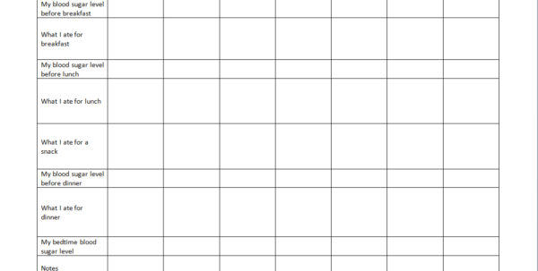 diabetes blood glucose diary spreadsheet diabetes glucose log spreadsheet