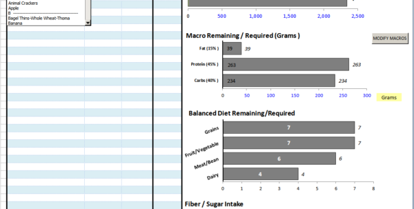 Diet Excel Spreadsheet In Best Excel Sheet Diet Plan  Bodybuilding Forums