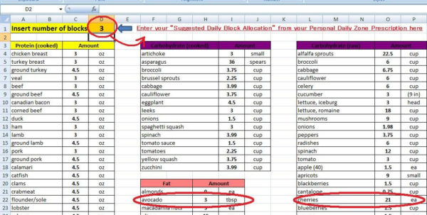 Diet Excel Spreadsheet Regarding Sheet Paleo Zone Excel Calculator Best Discovery Ever Find It Here
