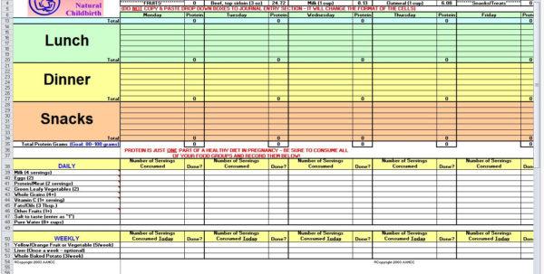 Diet Plan Spreadsheet Throughout Diet Excel Spreadsheet Pregnancy Planner Tracker Template Maggi