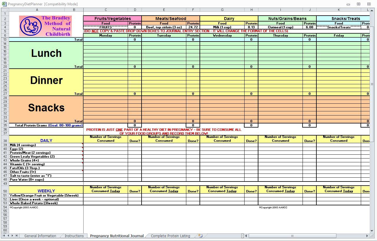 Diet Spreadsheet Inside Diet Excel Spreadsheet Pregnancy Planner Tracker Template Maggi