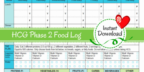 Diet Spreadsheet Template Within Hcg Diet Tracker Spreadsheet Elegant Calorie Counter Excel Template Diet Spreadsheet Template Printable Spreadsheet