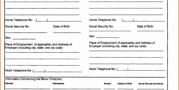 Divorce Spreadsheet Throughout Colorado Divorce Forms Child Support Worksheet Excel Fresh Fake Divorce Spreadsheet Spreadsheet Download