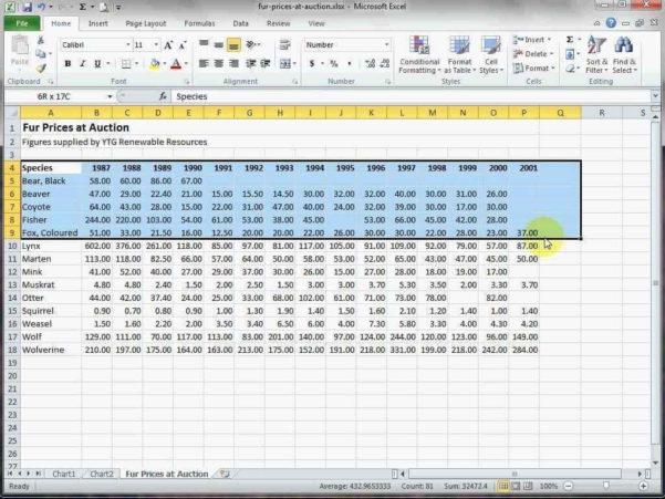 Excel Spreadsheet Basics Within Microsoft Excel Spreadsheet Basics Grdc Advanced Tutorial Pdf Sheet
