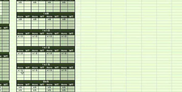 Excel Spreadsheet Classes Throughout Personal Training Excel Spreadsheet From Excel Training Designs For