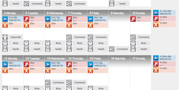 Excel Spreadsheet Workout Plan Intended For Setting Up Your Triathlon Training Log