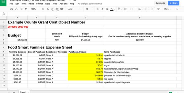 Expenses Spreadsheet Google Sheets With Utilizing Google Sheets To Help Manage Grant Budgets And Expenses