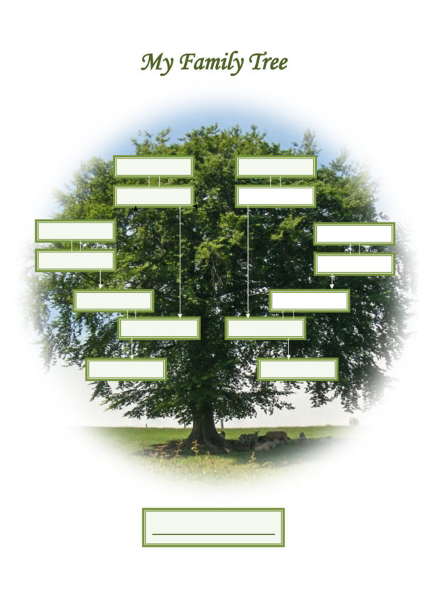 Family Tree Spreadsheet Free In 50  Free Family Tree Templates Word, Excel, Pdf  Template Lab