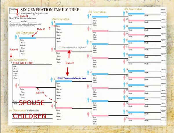 Family Tree Spreadsheet Intended For Genealogy Spreadsheet Template Family Group Sheet Template Word