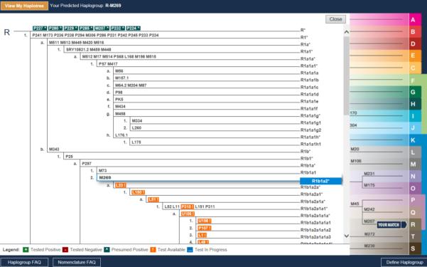 Family Tree Spreadsheet Intended For Simple Family Tree Templates  Homebiz4U2Profit