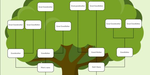 Family Tree Spreadsheet Template For Family Tree Templates To Create Family Tree Charts Online  Creately