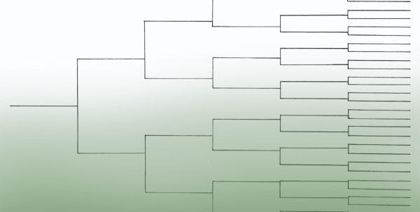 Family Tree Spreadsheet Template Regarding Family Tree Template Resources