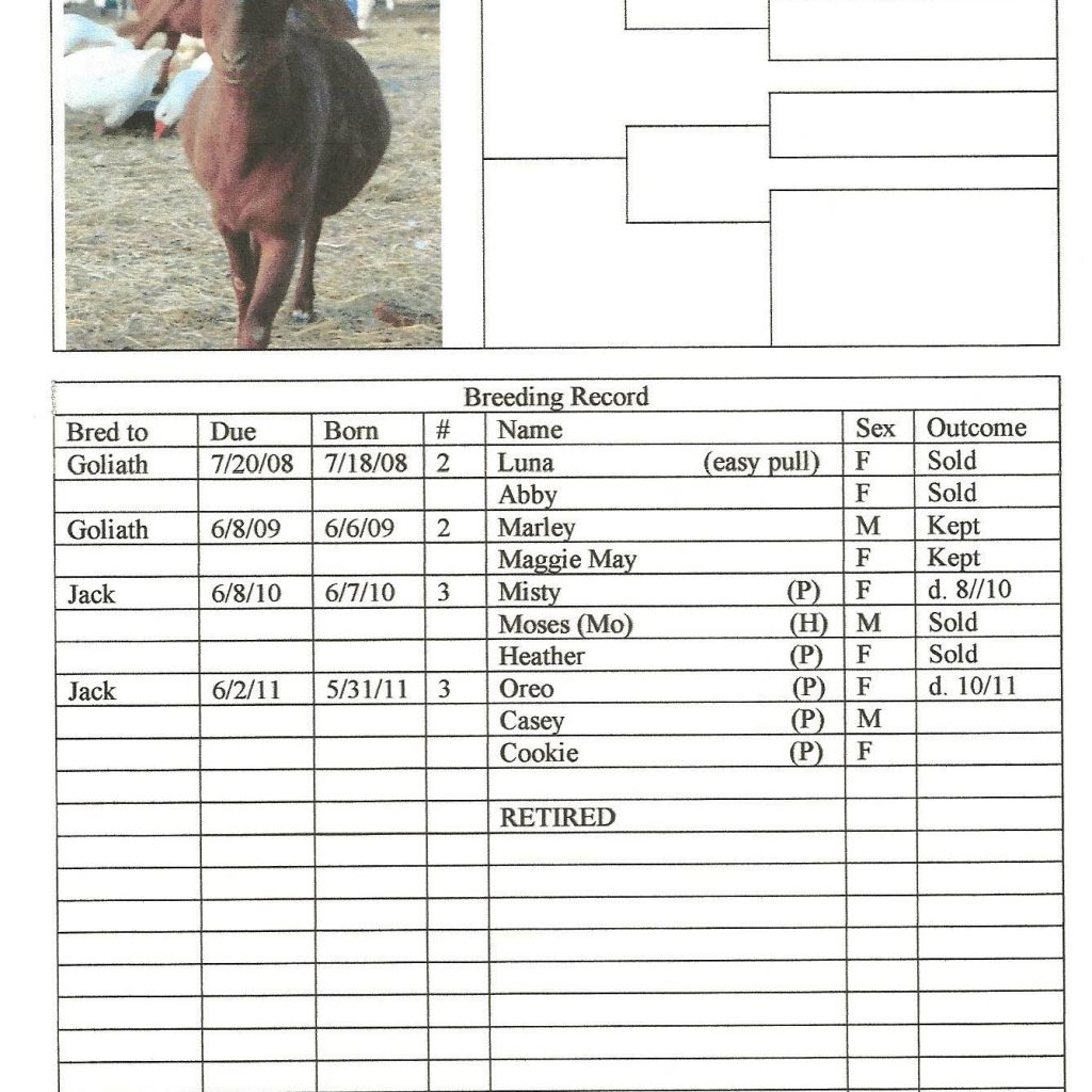 Farm Expenses Spreadsheet For Spreadsheets For Farm Record Keeping And Farm Expense Spreadsheet