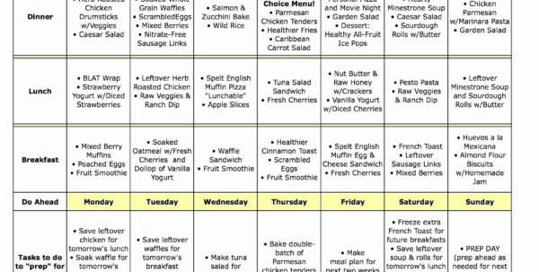 Fast Metabolism Diet Meal Plan Spreadsheet Inside Fast Metabolism Diet Meal Plan Spreadsheet – Spreadsheet Collections