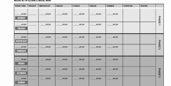 Fast Metabolism Diet Meal Plan Spreadsheet Within Fast Metabolism Diet Meal Plan Spreadsheet – Spreadsheet Collections