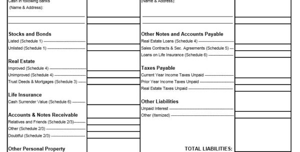 Financial Statement Spreadsheet Template Inside 40  Personal Financial Statement Templates  Forms  Template Lab