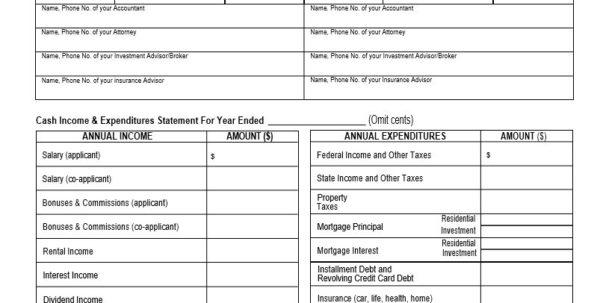 Financial Statement Spreadsheet Throughout Personal Financial Statements Templates 40 Statement Forms Template