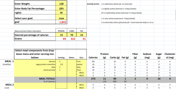 Fitness Plan Spreadsheet For Free Diet Planner – Vegan Muscle And Fitness