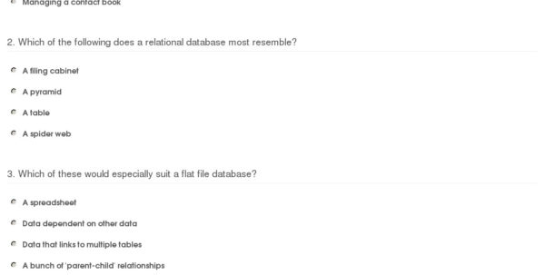 Flat File Database And Spreadsheets With Quiz  Worksheet  Flat File  Relational Databases  Study
