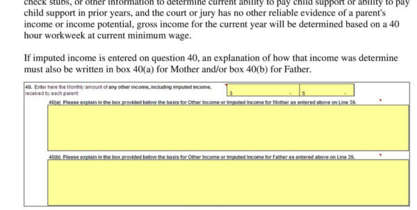 Florida Financial Affidavit Excel Spreadsheet Intended For State Of Georgia Child Support Commission. Excel Child Support