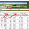 Gic Ladder Spreadsheet In Spreadsheet For Using Snowball Method To Pay Off Debt  Business Insider