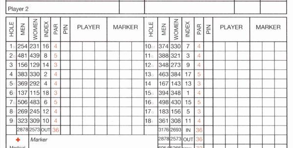 Golf Performance Analysis Spreadsheet Throughout 61 Lovely Photograph Of Golf League Spreadsheet  Natty Swanky