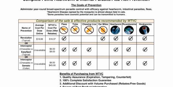 Health Insurance Cost Comparison Spreadsheet For Beautiful How To Compare Health Insurance Plans