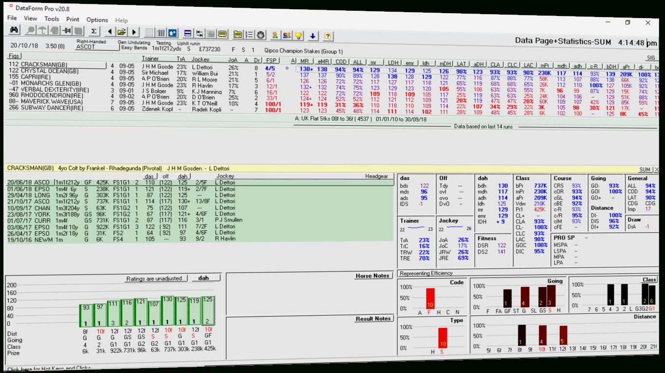 Horse Racing Form Spreadsheet In Dataform  Horse Racing Data, Form, Ratings, Statistics, Analysis