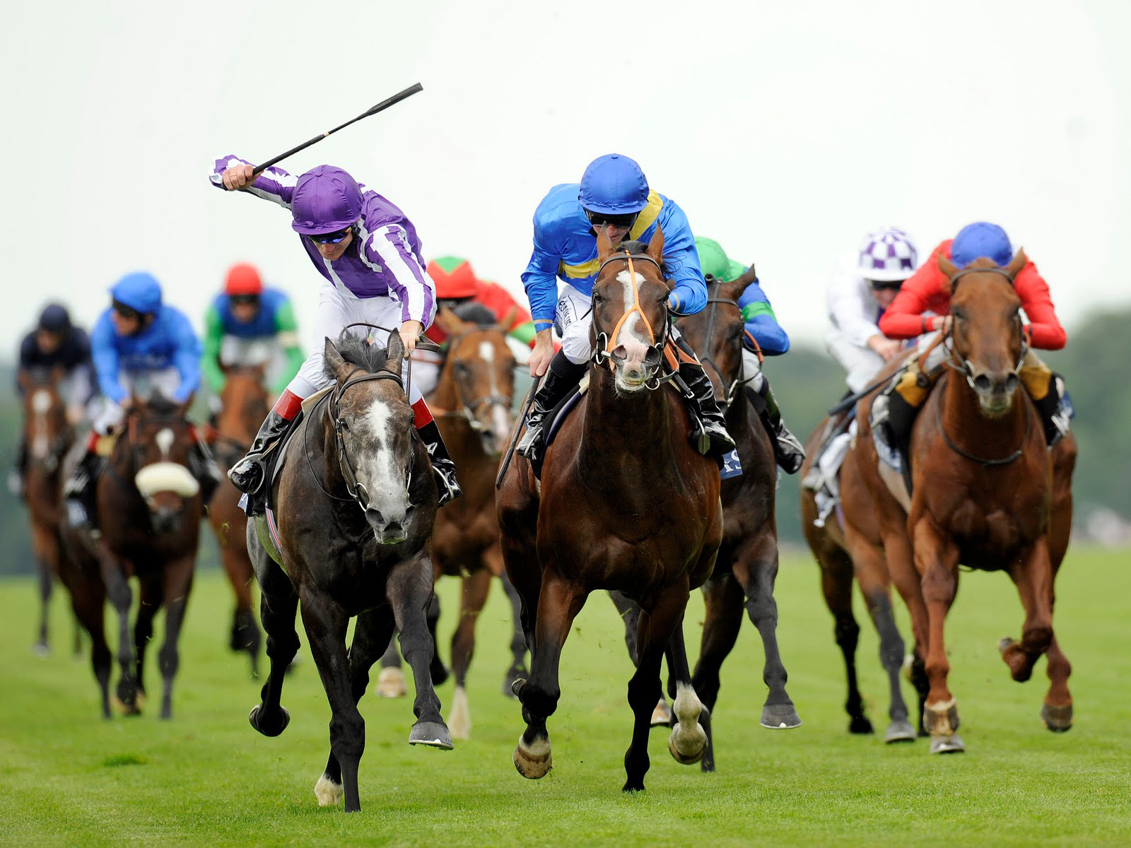 Horse Racing Form Spreadsheet In Free Sports Betting Spreadsheet For Horse Racing