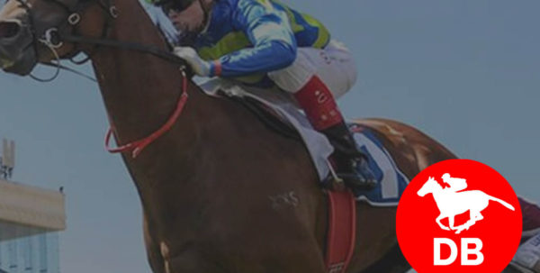 Horse Racing Ratings Spreadsheet For Daily Horse Racing Ratings  Free 25 Models Come Up With A Single