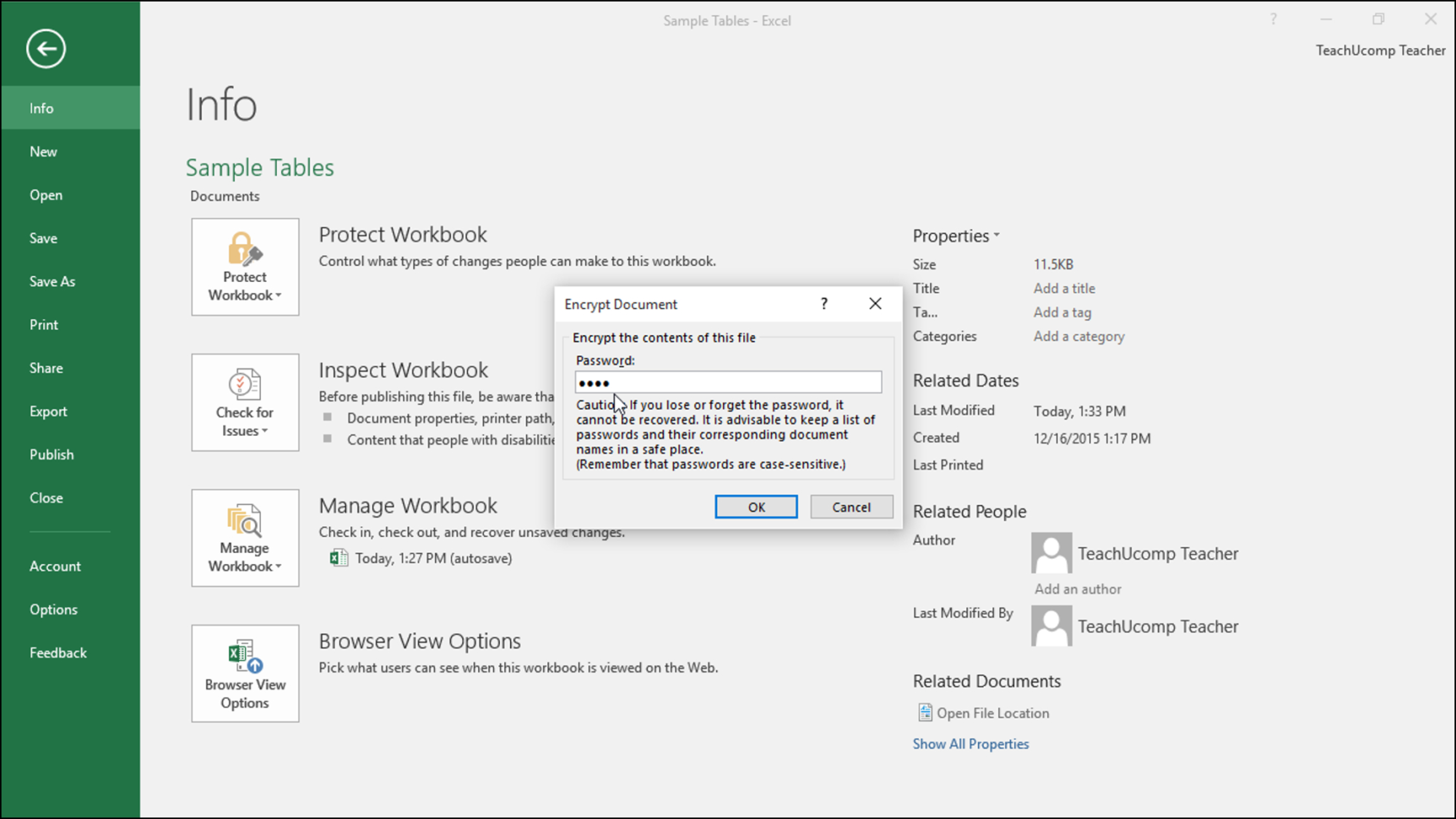 How Do You Password Protect An Excel Spreadsheet In Apply Password Protection To An Excel File  Instructions