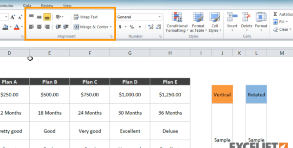 How To Do A Spreadsheet On Word Within Excel Tutorial: How To Use Text Orientation In Excel For How Do You