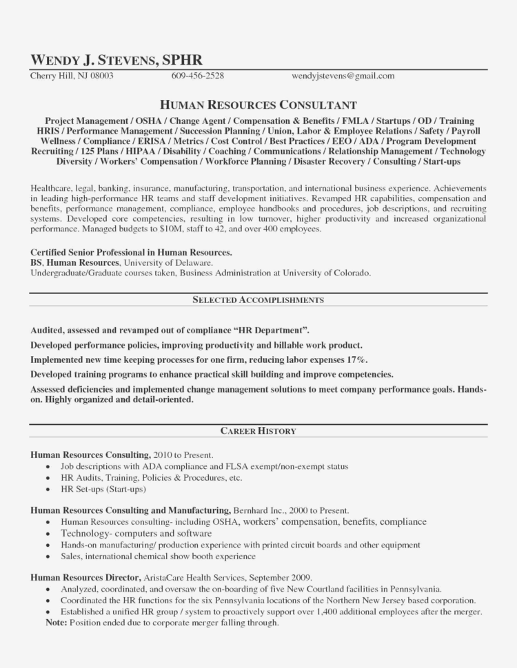 Hr Audit Spreadsheet In Sample Resume Business Process Improvement New Business Process