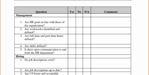 I 9 Audit Spreadsheet Within I Form Definition I9 How To Fill Out Uscis Document Design Ideas