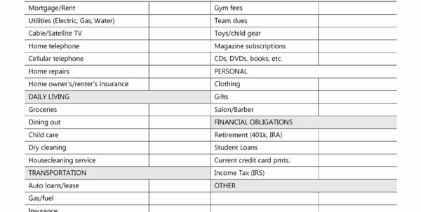 Income And Bills Spreadsheet With Regard To Business Income Expense Spreadsheet And Basic In E And Expenses