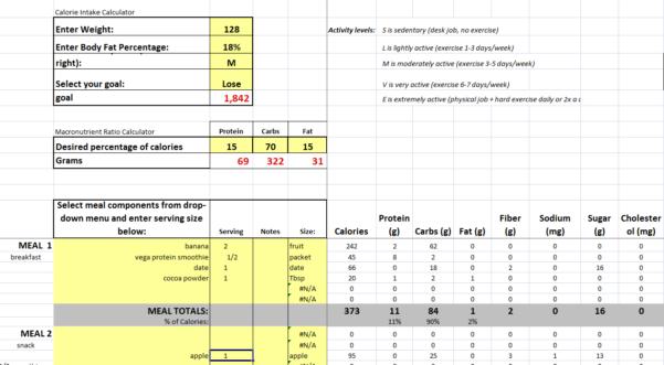 Keto Diet Spreadsheet With Excel Keto Diet Plan Sheet Paleo Spreadsheet Tracker Calorie Planner