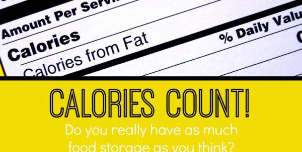 Lds Food Storage Calculator Spreadsheet Regarding Example Of Food Storager Spreadsheet Lds Elegant  Pianotreasure