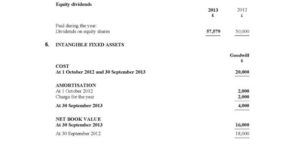 Limited Company Accounts Spreadsheet Regarding Product Detail