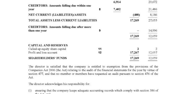Limited Company Accounts Spreadsheet With Product Detail