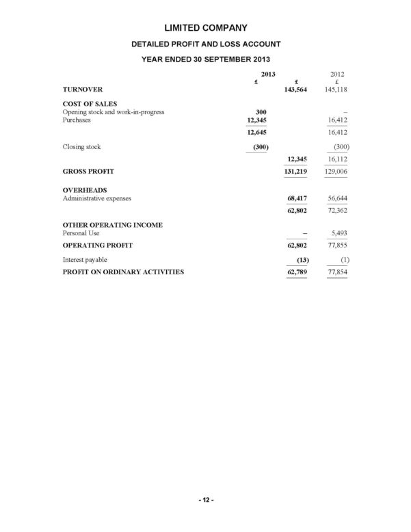Limited Company Accounts Spreadsheet Within Product Detail