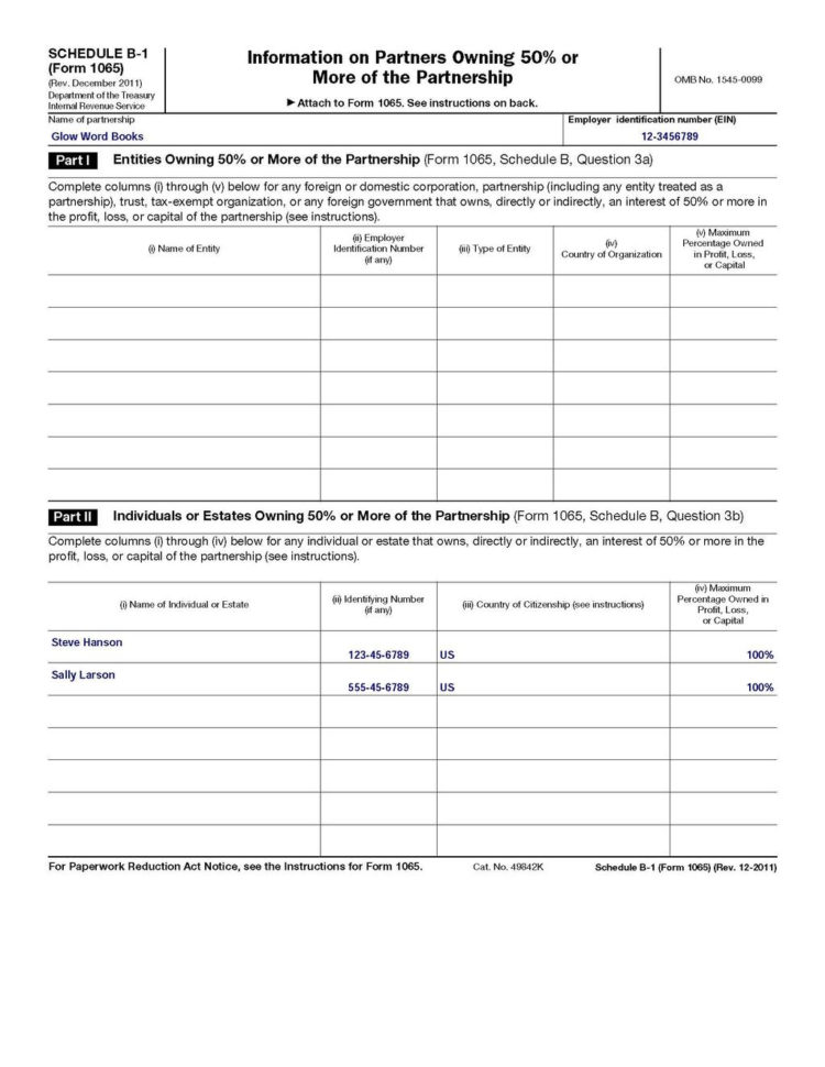Llc Capital Account Spreadsheet For How To Fill Out An Llc 1065 Irs Tax Form